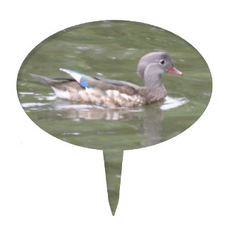 Duck on the Lake Cake Pick