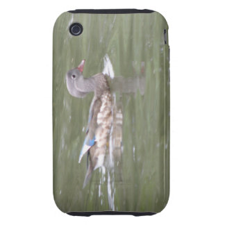 Duck on the Lake iPhone 3 Case
