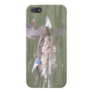 Duck on the Lake  iPhone SE/5/5s Case