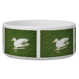 Duck on the Water Dog Bowl