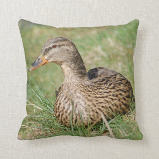 Duck Pillow cushion