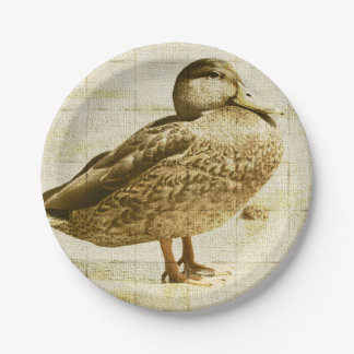 Duck Plate