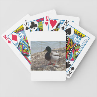 Duck Playing Cards