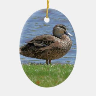 Duck Pond Ceramic Ornament