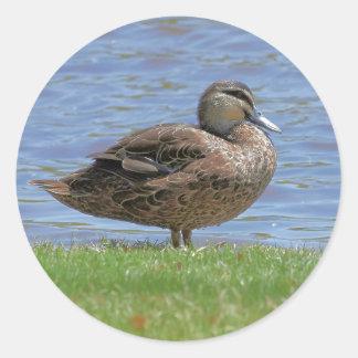 Duck Pond Classic Round Sticker