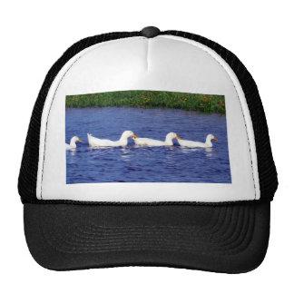 Duck Pond Hats