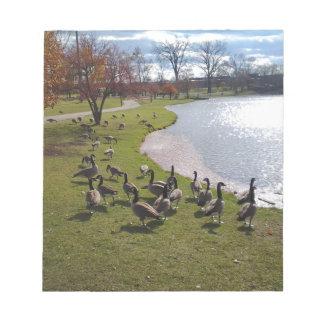 Duck Pond.jpg Note Pad