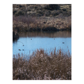 Duck Pond Letterhead