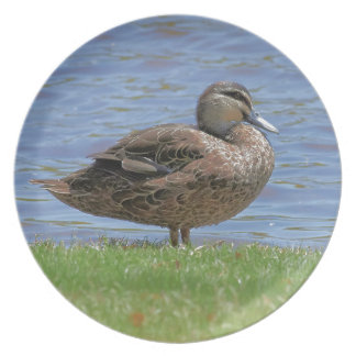 Duck Pond Melamine Plate