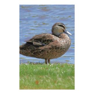 Duck Pond Stationery