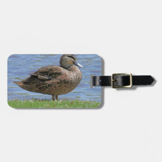 Duck Pond Tag For Luggage