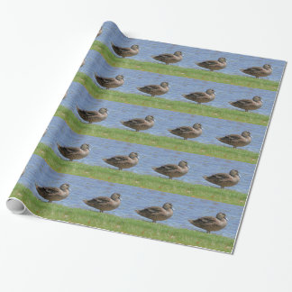 Duck Pond Wrapping Paper