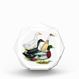 Duck Quartet Award