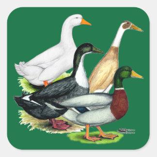 Duck Quartet Square Sticker