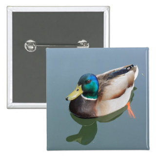 duck reflected by the water 2 inch square button