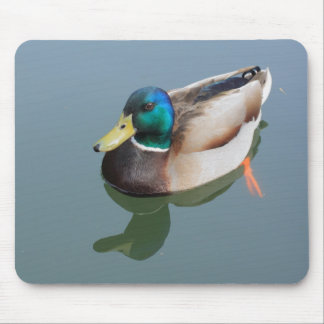 duck reflected by the water mouse pad