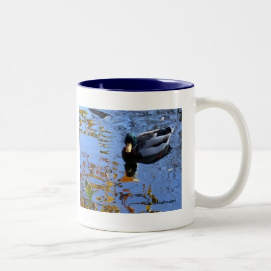 Duck Reflections Two-Tone Coffee Mug