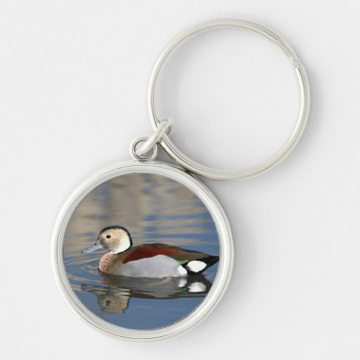 Duck, ringed teal beautiful reflection keychain