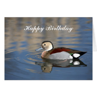 Duck, ringed teal reflection happy birthday card