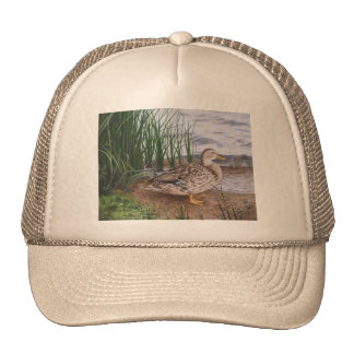DUCK-ROUND LAKE TRUCKER HAT
