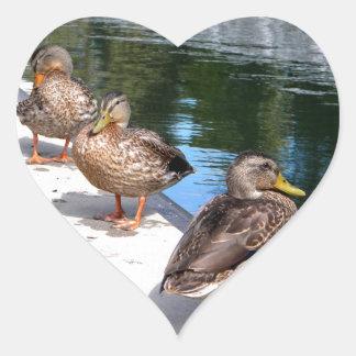 Duck Row Heart Sticker