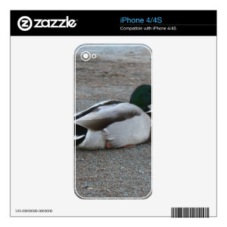 Duck Skins For The iPhone 4