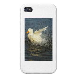 Duck Splash iPhone 4 Cover