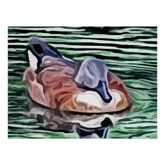 Duck swimming in water painting poster