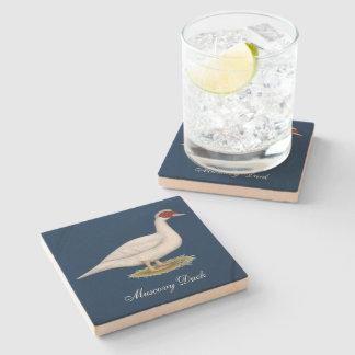 Duck White Muscovy Stone Coaster