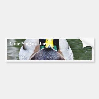 Duck Wild Animal Bumper Sticker