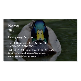 Duck Wild Animal Business Card Template