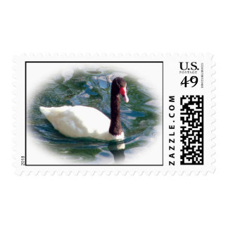 Duck with Abstract Water Postage Stamp