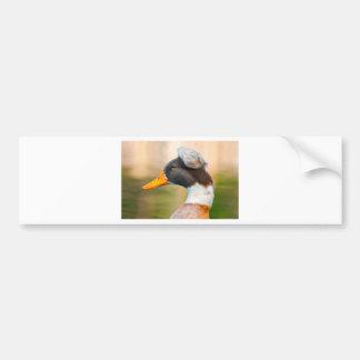 Duck with Mohawk Bumper Sticker