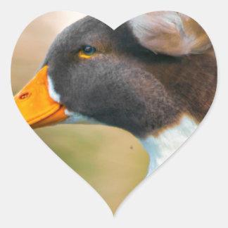 Duck with Mohawk Heart Sticker