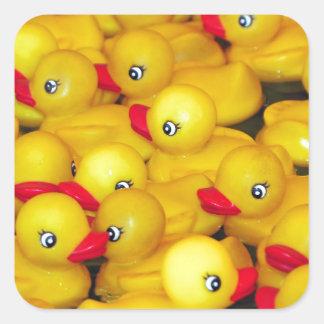 Duckies de goma amarillos lindos pegatina cuadrada