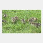 Duckies en la hierba rectangular altavoz