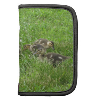 Duckies in the Grass Folio Planners