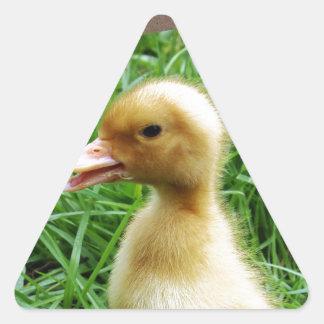 Ducking in the Grass Triangle Sticker