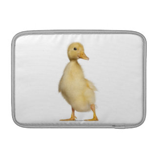 Duckling (1 week old) MacBook air sleeves