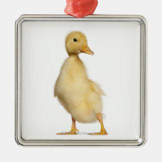 Duckling (1 week old) metal ornament