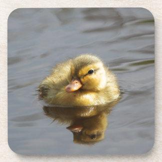 Duckling Beverage Coaster
