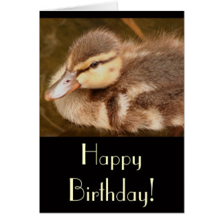 Duckling Birthday Card
