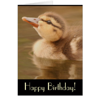 Duckling Birthday Card