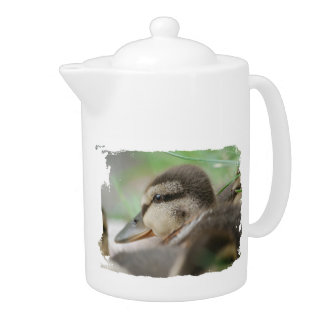 Duckling CAN tone - Photography Jean Louis Glineur Teapot