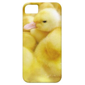 Duckling Case