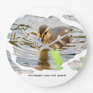 DUCKLING COLLECTION - photo Jean Louis Glineur Large Clock