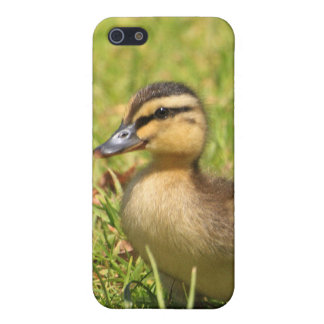 Duckling  cover for iPhone SE/5/5s