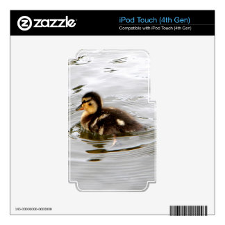 Duckling Decals For iPod Touch 4G