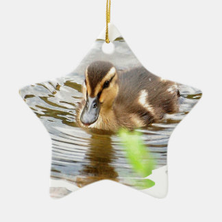 DUCKLING DUCK CHICKEN photo Jean Louis Glineur Ceramic Ornament