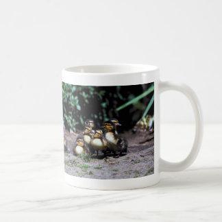 Duckling Group Classic White Coffee Mug